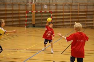 H_L handballcup 21.11.15 047