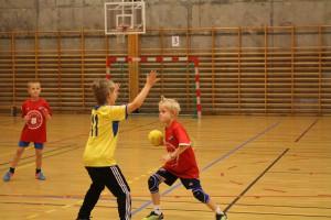 H_L handballcup 21.11.15 055