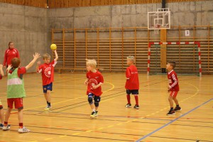 H_L handballcup 21.11.15 081