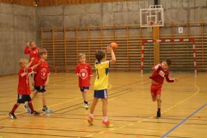 H_L handballcup 21.11.15 120